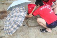任务:建沙城-伞中造城
