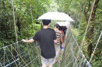 走在吊桥上