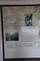 Pulau Jerejak 的花草树木简介